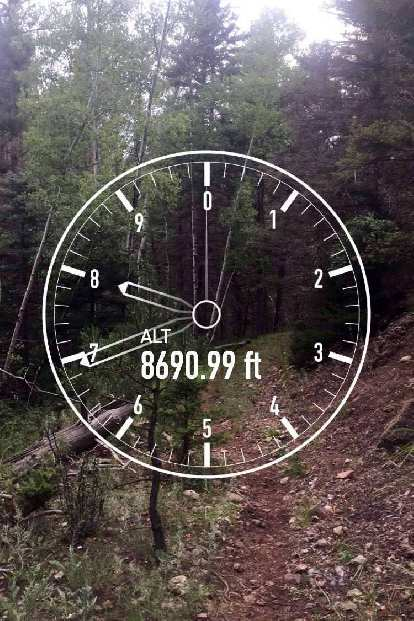 The green loop of the 2016 Ragnar Trail Angelfire relay at altitude 8691 feet.