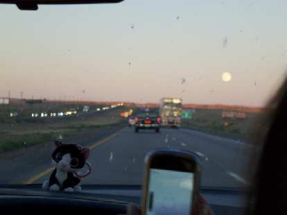 Driving towards Santa Fe and a full moon with Asiatic Wildcat on the dash.