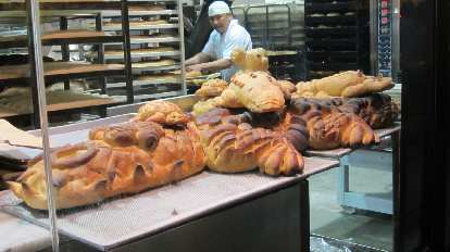 Bread alligator at Boudin.