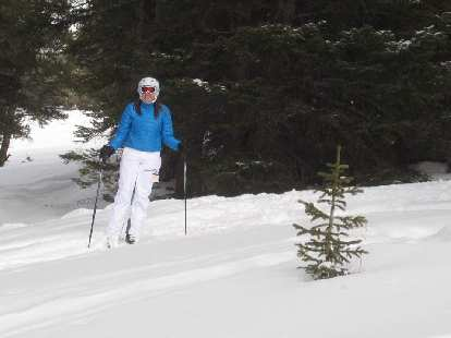 Kelly skiing through the trees for a little bit after going over a log.