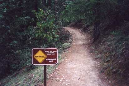 "Mile 1: ""Strenuous Hike... 6 hours.""  This warning was posted for those who wanted to visit Berry Creek Falls."