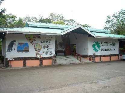 The Sloth Sanctuary.