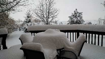 Day 3: About 20 inches of snow!