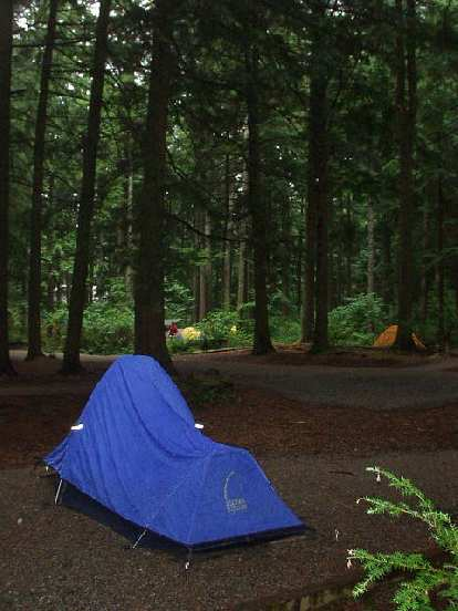 Ok, I got a preview of Vancouver's wet winters... in late August.  Last night was the first time during the entire trip I had to use the rain fly on my tent!