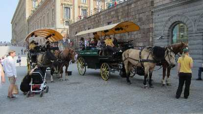 Carriage rides at the Royal Palace.