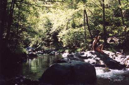 Sarah taking an impromptu dip in the creek.