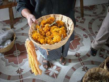 Dyes were created from local plants such as these marigolds.