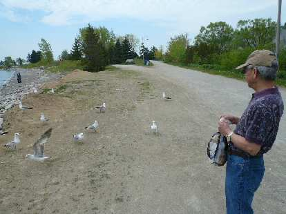 The next day, Stephen and I went to the Scarborough Bluffs to feed the birds.
