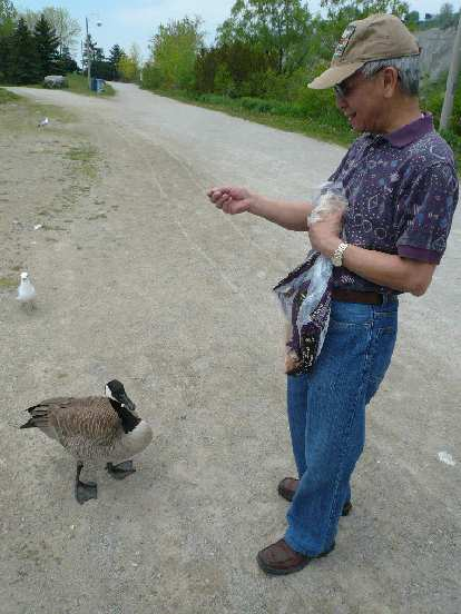 Stephen says hello to a Canadian goose.