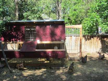 Another chicken coop.