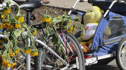 A bicycle adorned with sunflowers and towing a trailer filled with stuffed animals.