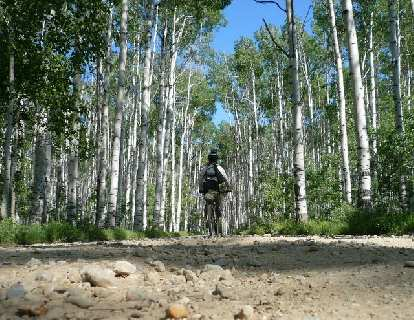 Day 15: This is more like it.  Aspen Alley, WY, less than 20 miles north of Colorado.