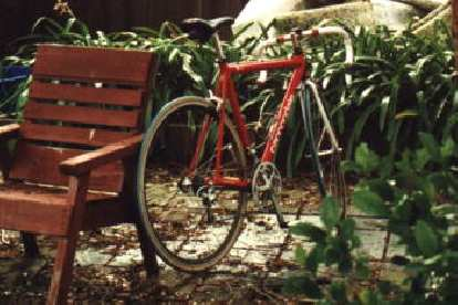 1999 marked her next major componentry upgrade: to 27-speed Campagnolo components!  For a few months we also experimented with some (hideous-looking) green Michelin tires (sorry, Canny).