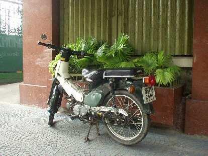 The classic Honda Super Cub.