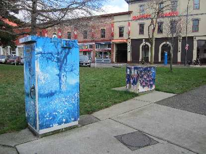 The City of Victoria does the same thing Fort Collins does: have artists paint the utility boxes to discourage vandalism.