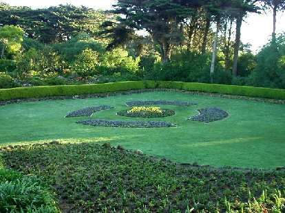 The run went through San Francisco's Golden Gate Park and started by this field of colorful flower arrangements.