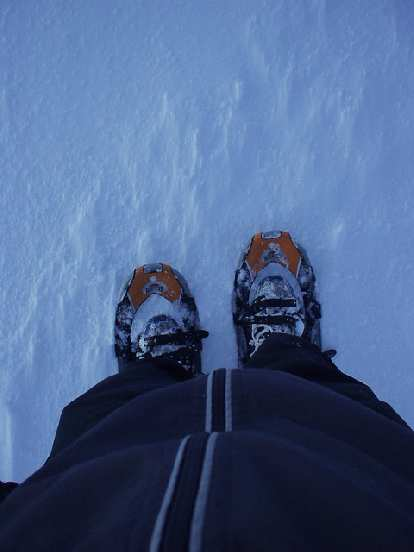 But I stuck to the trail as I wanted to try out my new RedFeather Race snowshoes today.