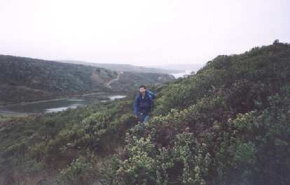 [Point Reyes, Nov 2001] Felix Wong charging dwn the trail in crazy-rain weather.