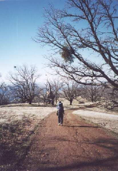 [Ohlone Wilderness Trail, Jan 2002] Hiking to Murietta Falls from camp the next day, which turned out to be much warmer and sunnier!