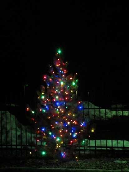 A lighted-up x-mas tree.