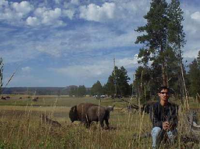 Felix Wong and some buffalo.