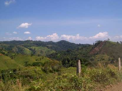 The lush Costa Rican countryside.