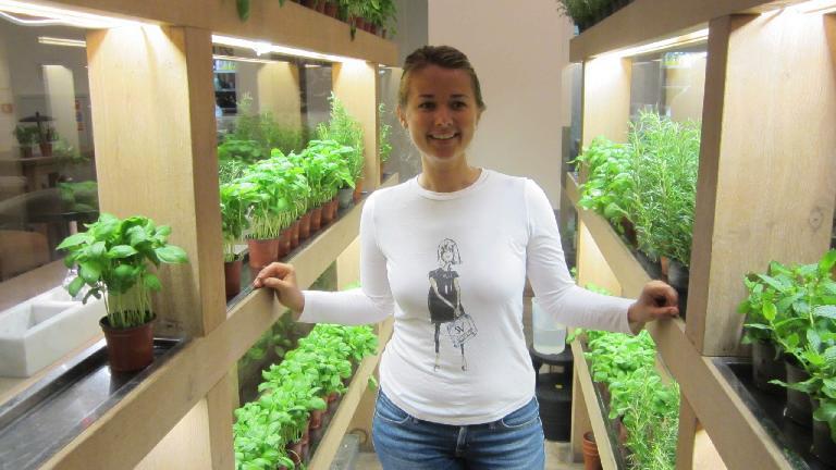 Katia among the basil plants in Vapiano.