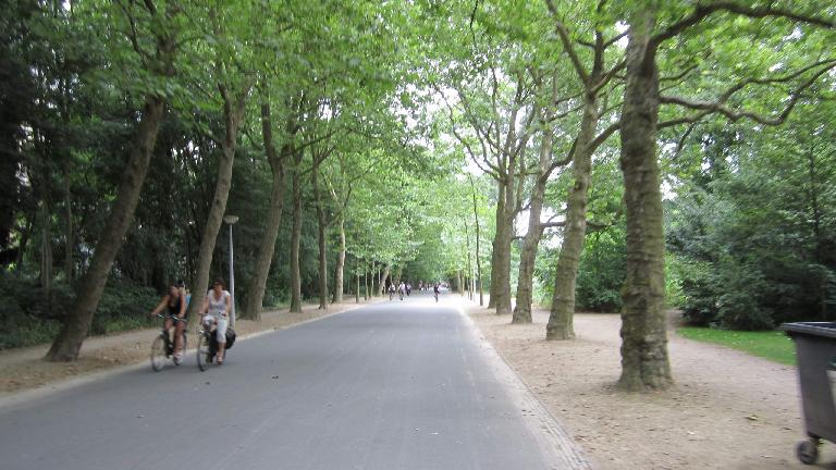 Beautiful tree-lined trail in Vondelpark.