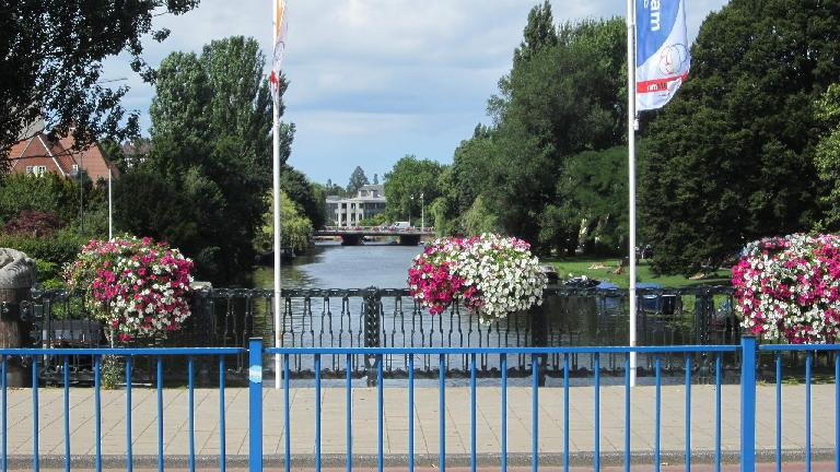 Canal and flowers.