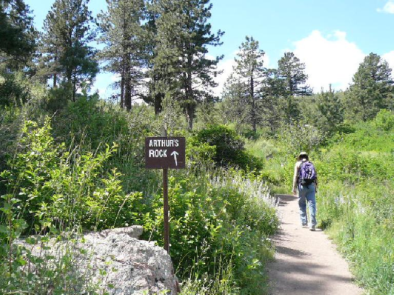On the way up to Arthur's Rock.  The top is 1.7 miles from the southern-most trailhead at Lory State Park.