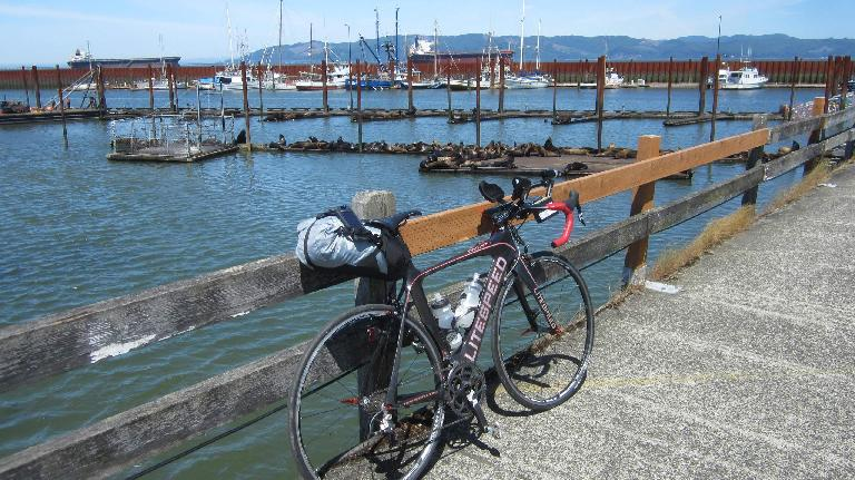 black 2010 Litespeed Archon C2, pier, Astoria, Oregon, seals, ships