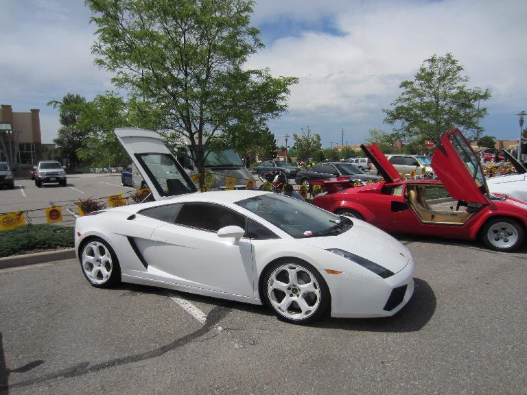 Kelly with her favorite car of the show, a white Lamborghini Gallardo.