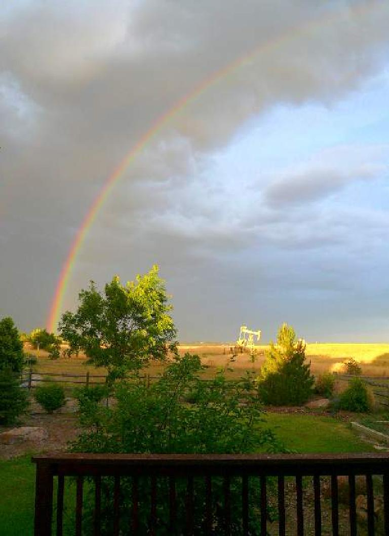 Rainbow over the back yard.