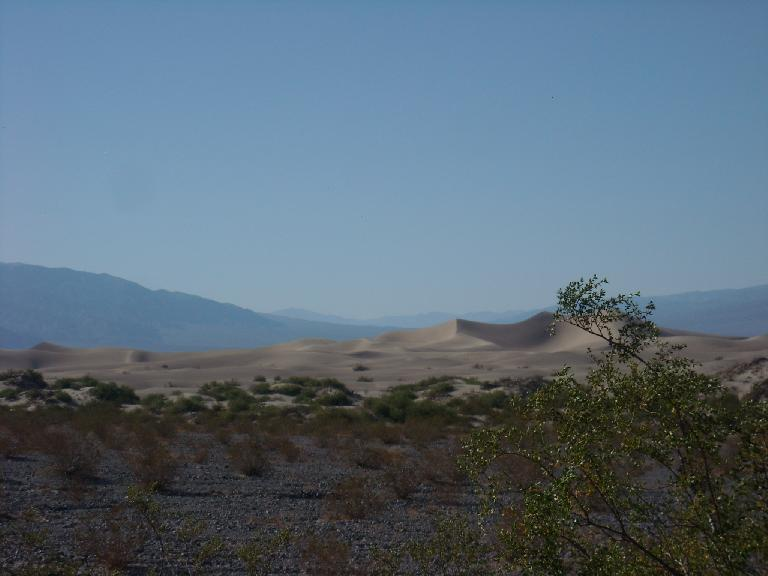 Dunes east of Stovepipe Wells.