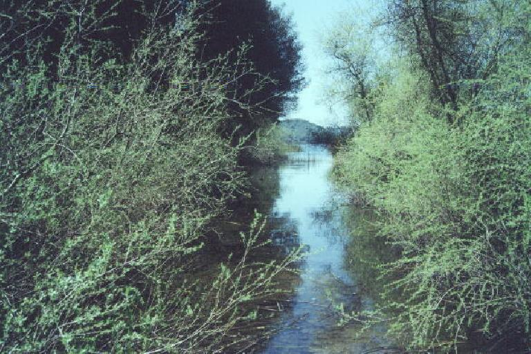 A river leading to the reservoir.