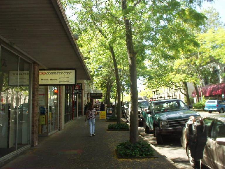 Downtown Bellingham was nice, with quite a few cafes, shops, restaurants, and galleries.