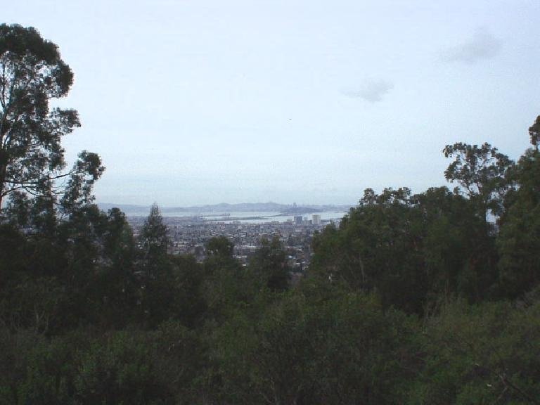 With the rains of the last week it was clear enough to see the Bay Bridge and San Francisco.