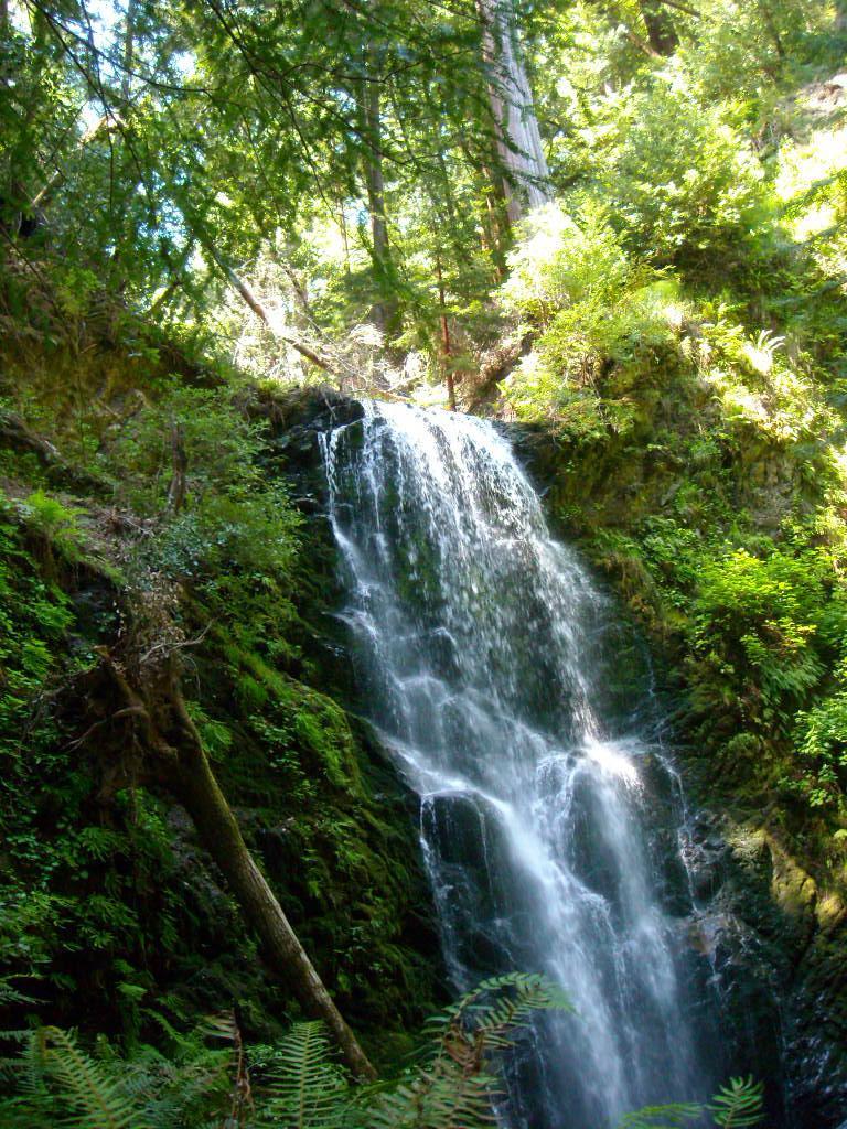 Berry Creek Falls.