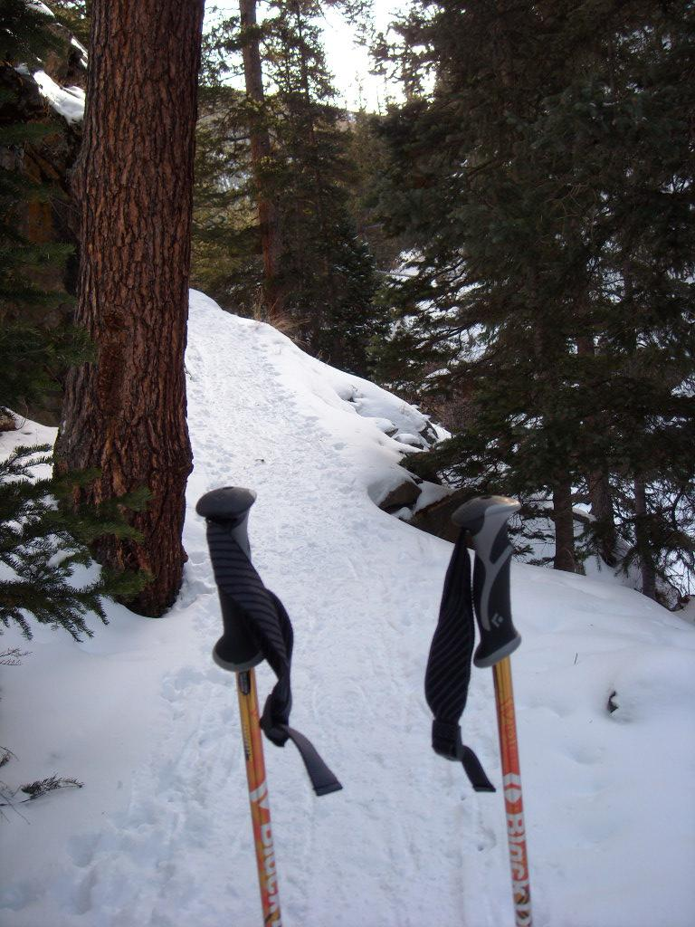 My ski poles in the snow.