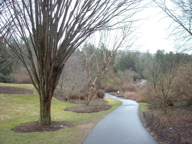 Walking trail outside the Bilmore House.