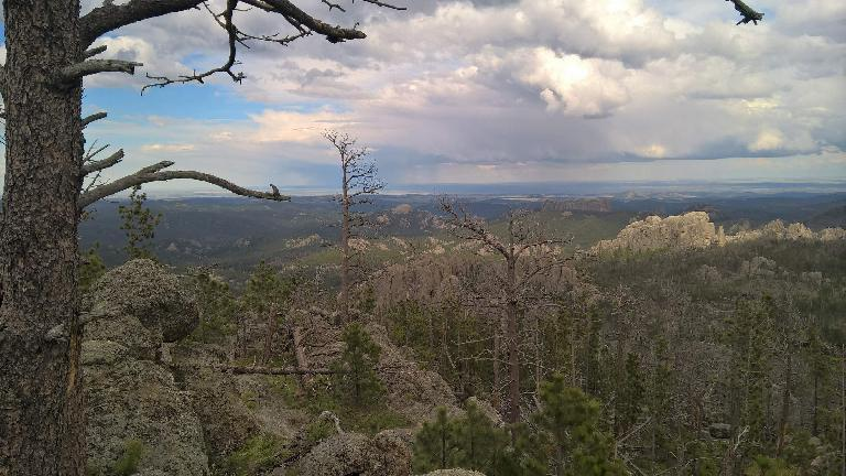 The view from the north end of Trail 9 in the Black Elk Wilderness National Forest.