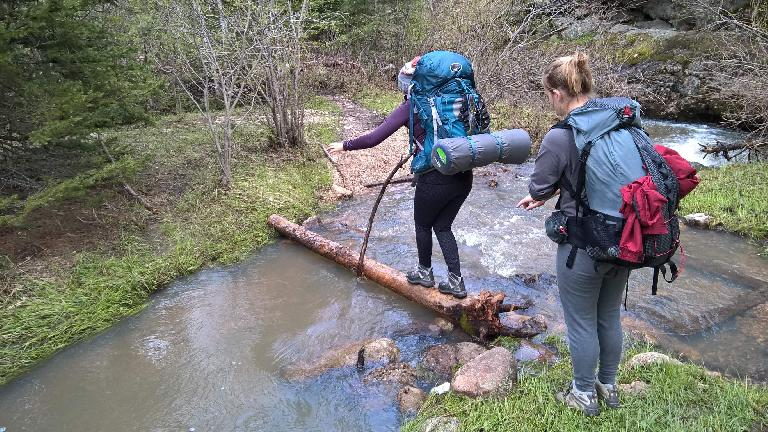Diana and Saar crossing yet another stream on a log. (May 27, 2016)