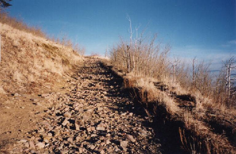 The trail up Sugerloaf Mountain.