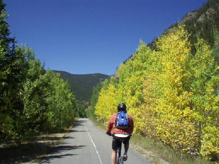 Mike riding along by aspen that has already begun to change colors.