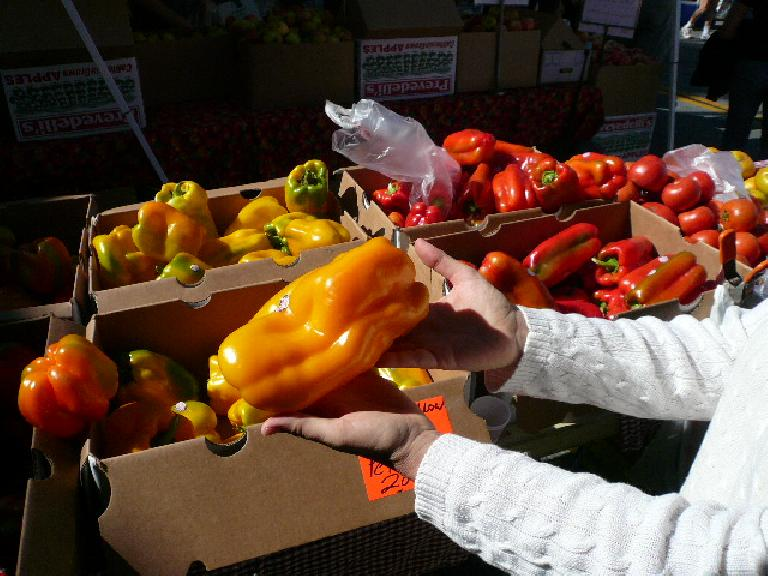 Humungous bell peppers at the Palo Alto Farmers Market.