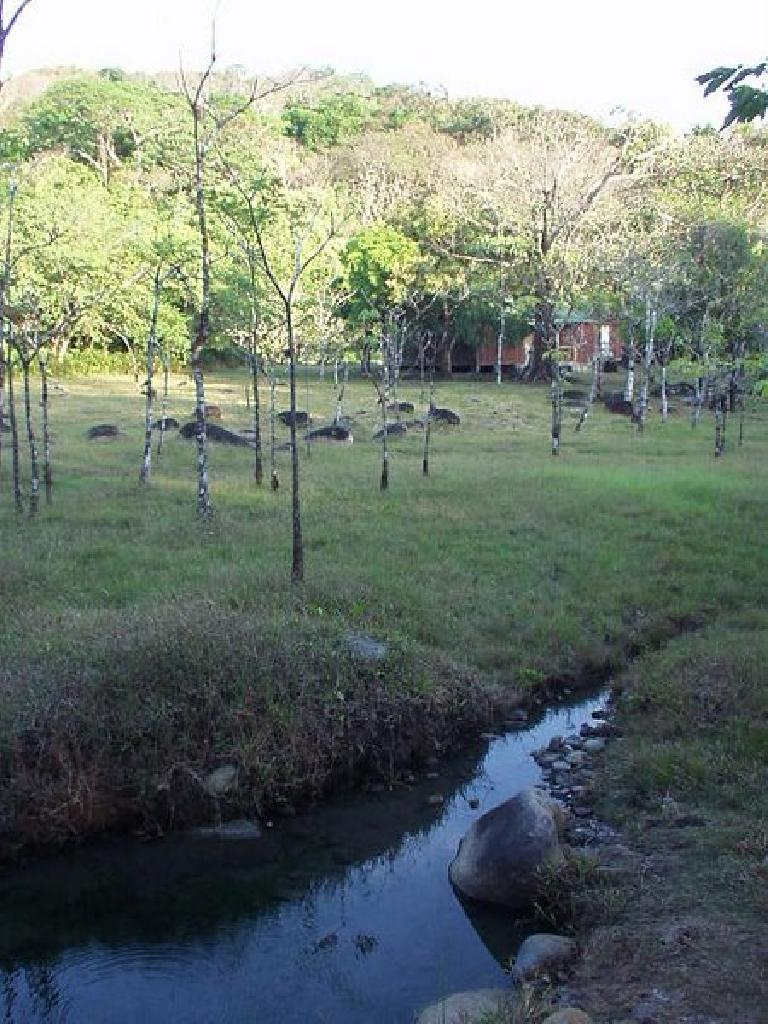 This amazing property also has creeks running from the springs...