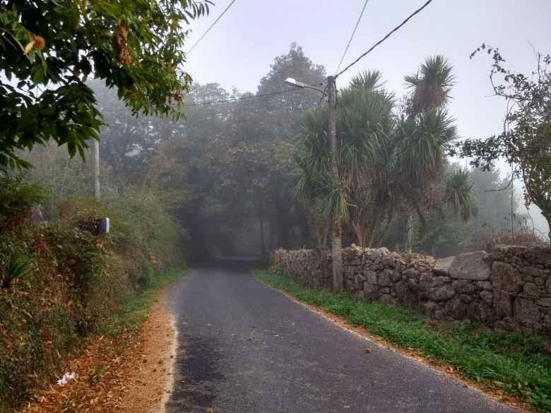 Foggy morning on the Camiño de Fisterra.