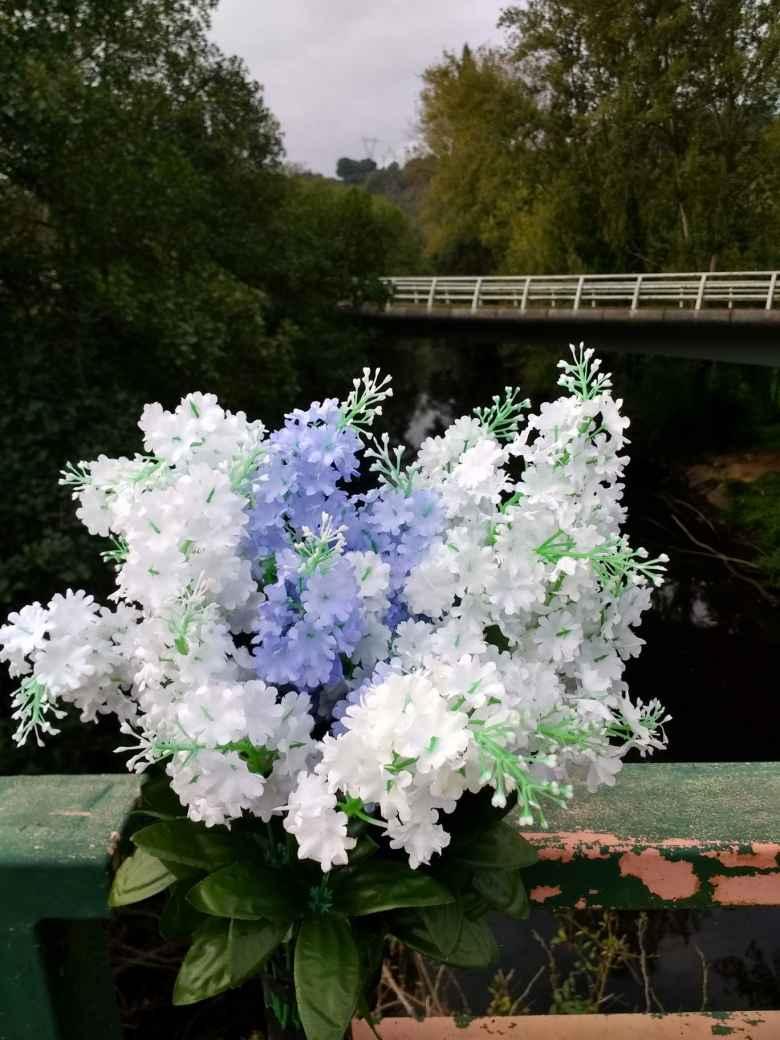Beautiful flowers on a bridge in Gallegos, Spain.
