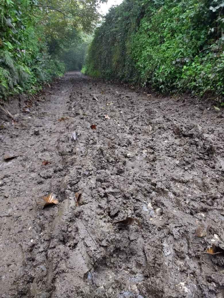 The Camino Primitivo got very muddy west of El Pedregal, Spain.