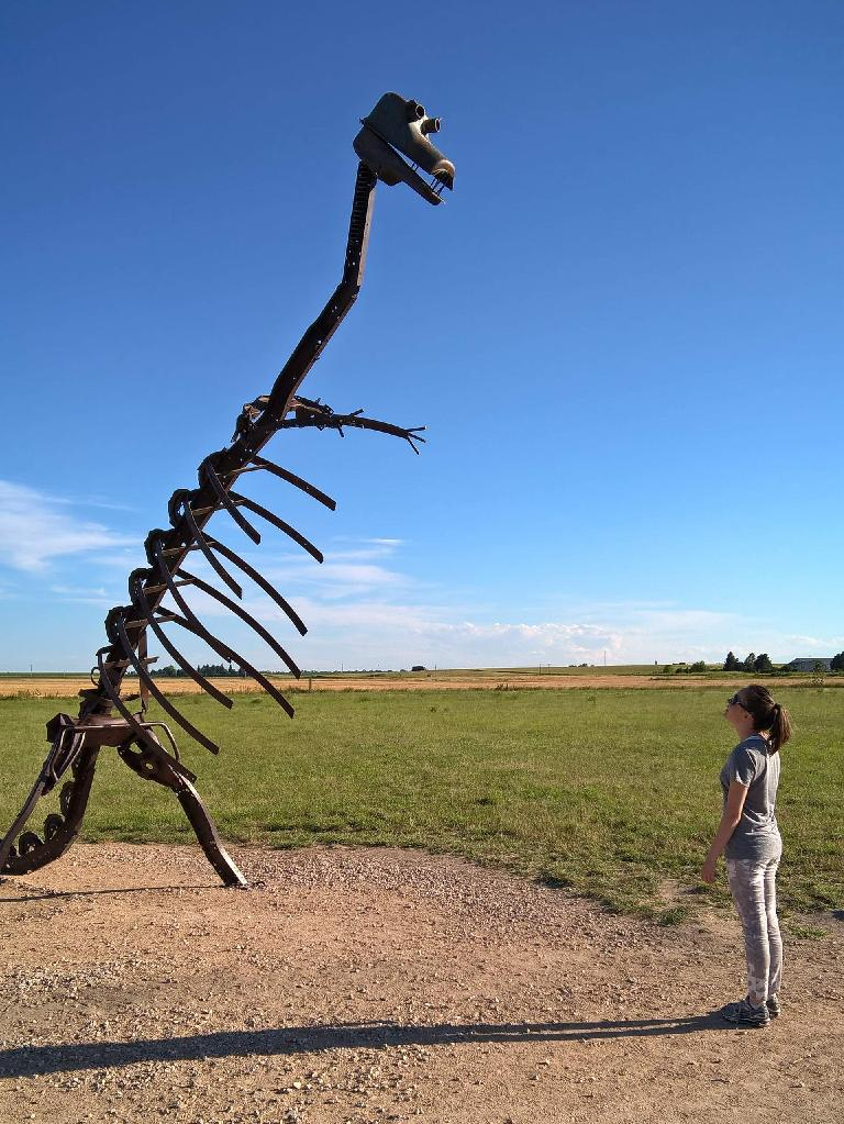 Maureen looking at a dinosaur skeleton.